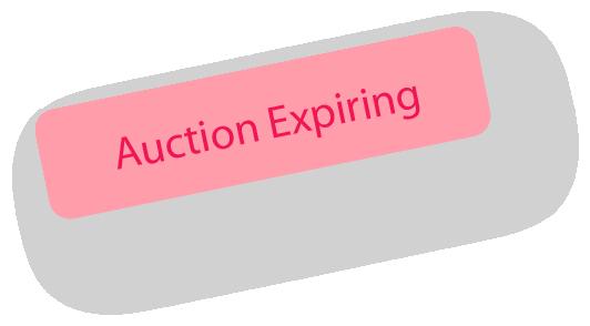 auction expiring